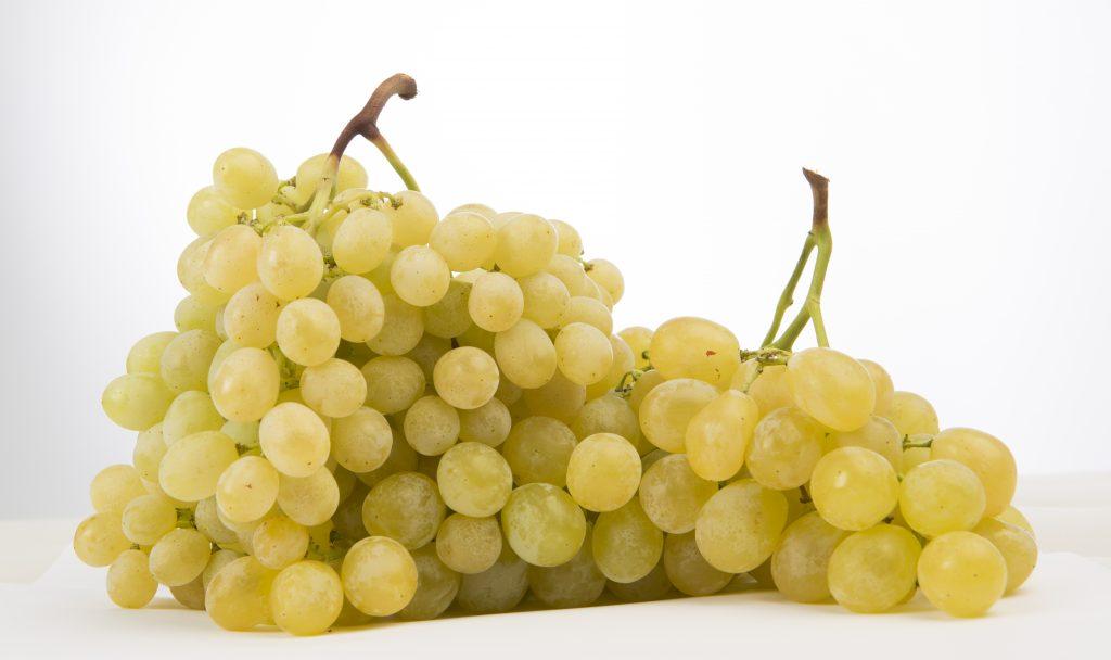 El resultado , la uva de mesa de uvarica